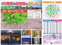 Sakuraparkgolf_2